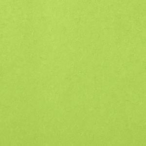 Our custom Lime 10 sheets Tissue Paper will add that special attention to detail that cannot be overlooked.
