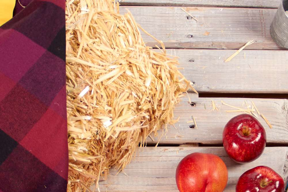 fall hay and plaid party decorations