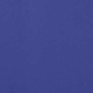 For Your Party's elegant Royal Blue 10 sheets Tissue Paper are a must-have for your next event—whatever the celebration!