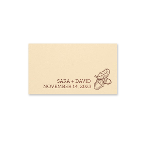 ForYourParty's personalized Natural Ivory Regal Place Card with Shiny Merlot Foil has a Acorns graphic and is good for use in Floral, Thanksgiving, Adventure and Wedding themed parties and will make your guests swoon. Personalize your party's theme today.