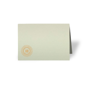 Our custom Poptone Mint Classic Place Card with Shiny Copper Foil Color has a sunburst frame 2 graphic and is good for use in Frames themed parties and can be personalized to match your party's exact theme and tempo.