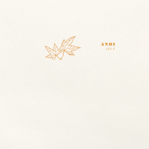 Our custom Lettra Pearl White 110lb Invitation Envelope with Shiny Copper Foil has a Two Leaves graphic and is good for use in Fall themed weddings and will impress guests like no other. Make this party unforgettable.