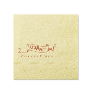 Just Married Banner Napkin
