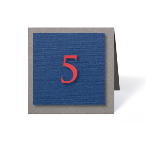 Customize these textured table numbers for a lively table addition! Perfect for a birthday party, mitzvah or wedding reception. Simply choose your theme colors, select the number needed and complete your seating chart.