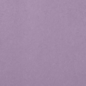 ForYourParty's chic Lavender 10 sheets Tissue Paper will add that special attention to detail that cannot be overlooked.