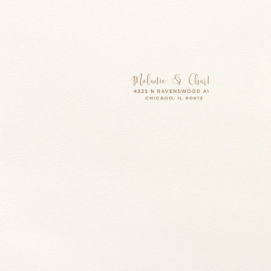 Custom Wedding Invitation Envelope | For Your Party